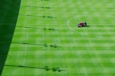 football goalpost detail with grass