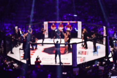 blurred background of mma fight  ring with fighter champion decoration