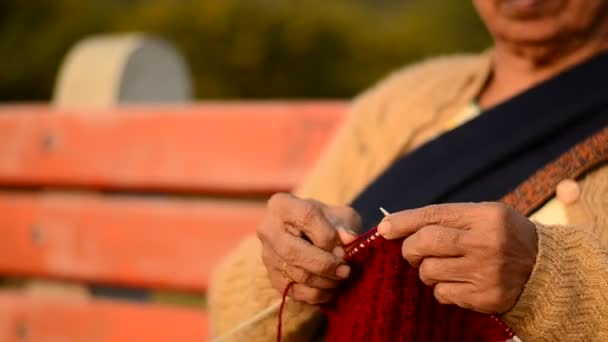 Close up of a Senior Indian women knitting maroon sweater in a park in  Delhi, India