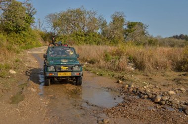 offroad gypsy vehicle crossing muddy waters in forest lands of Jim Corbett National Park