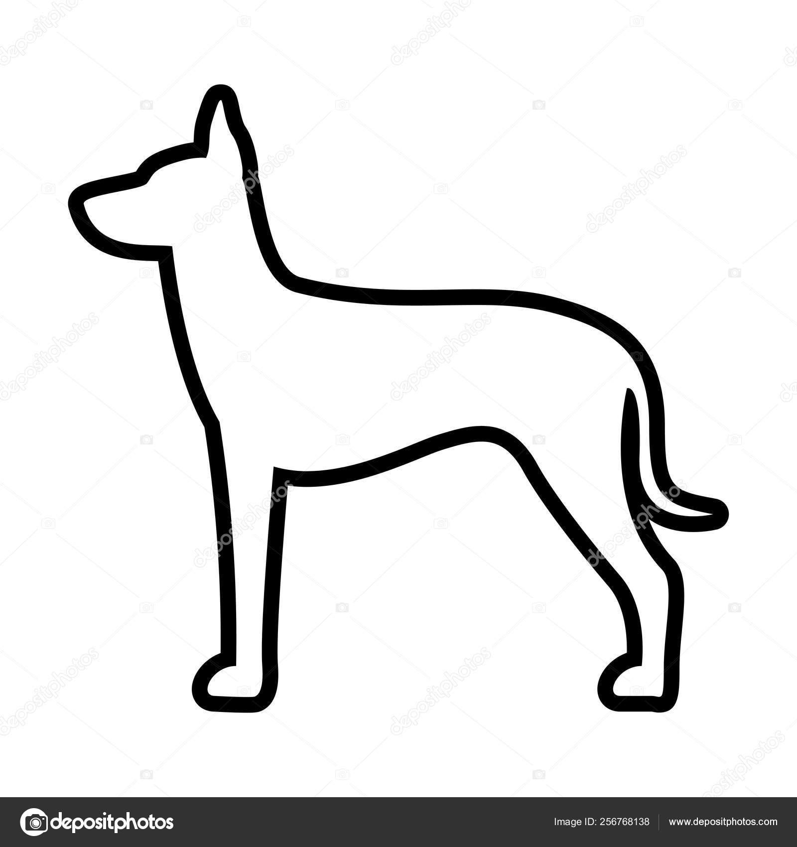 Xoloitzcuintli Icono De Perro Aislado Sobre Fondo Blanco