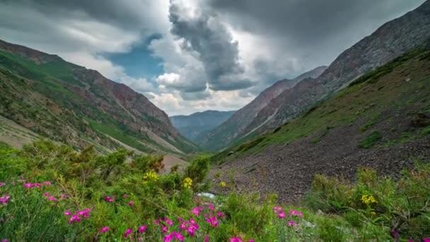 Panoramatický výhled na krásnou horskou krajinu v Alpách se zelenými horskými pastvinami s květinami a sněhem se v pozadí ve jarní době rozpláňuje horami. Časový interval 4 k