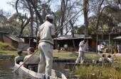 Moremi, Botswana - August, 24, 2013: Tourists canoeing with safari guides on Okavango delta