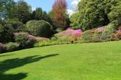 Pohled na zahradu Villa Carlotta