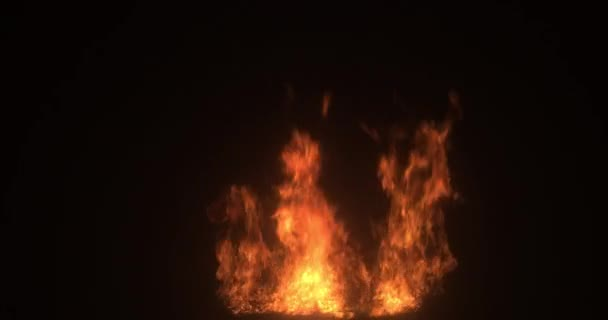 Real fire flame vfx element. Campfire. Burning in a Fire isolated on black background.
