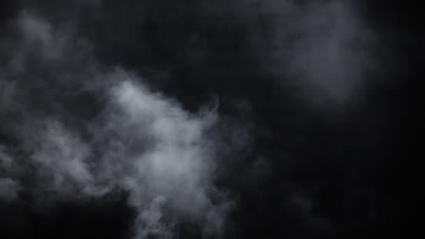Spooky magic halloween  Atmospheric smoke VFX element  Haze background   Abstract smoke cloud  Smoke in slow motion on black background  White smoke  slowly floating through space against black