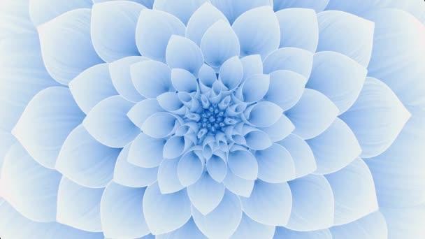 Kvetoucí Modrý květ. Bezešvé smyčky.