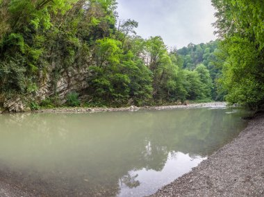 Green forest on the shore of a mountain river with turquoise wate with cliffs