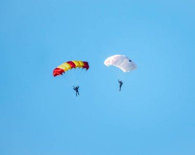Two parachutists with white parachute floats slowly at low altitude on the background of clear sky. Skydiving, sports and active kind of extreme relaxation