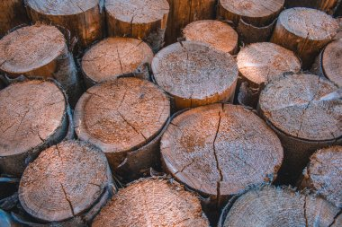 Pile of natural wood logs. Background of wooden texture