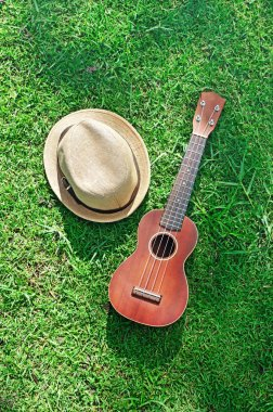Acoustic ukulele with hat on green grass