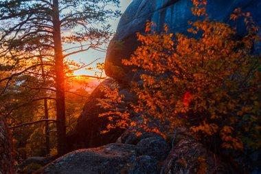 Evening mountain landscape. Mountains rocks trees against the setting sun. Krasnoyarsk National Park Pillars.