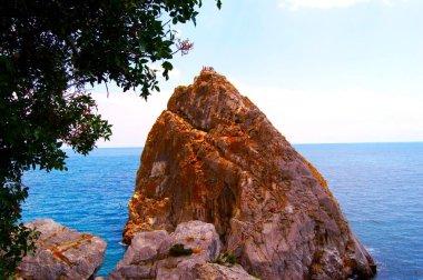 Beautiful coast and sea of Crimea in the summer