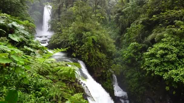 V Kostarice je krásný park La Paz vodopády. Jsou to exotické džungle a nádherné vodopády na svahu sopky Poas. Února 2018