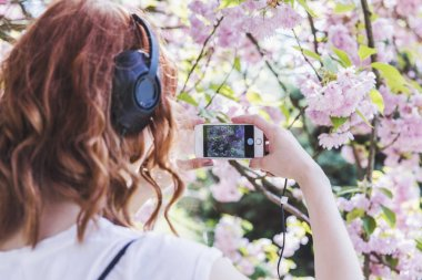 Young hipster redhead girl in white t-shirt and gray skirt listens a music spring time blossom cherry trees garden. Retro tapes, spring time, go for a walk.