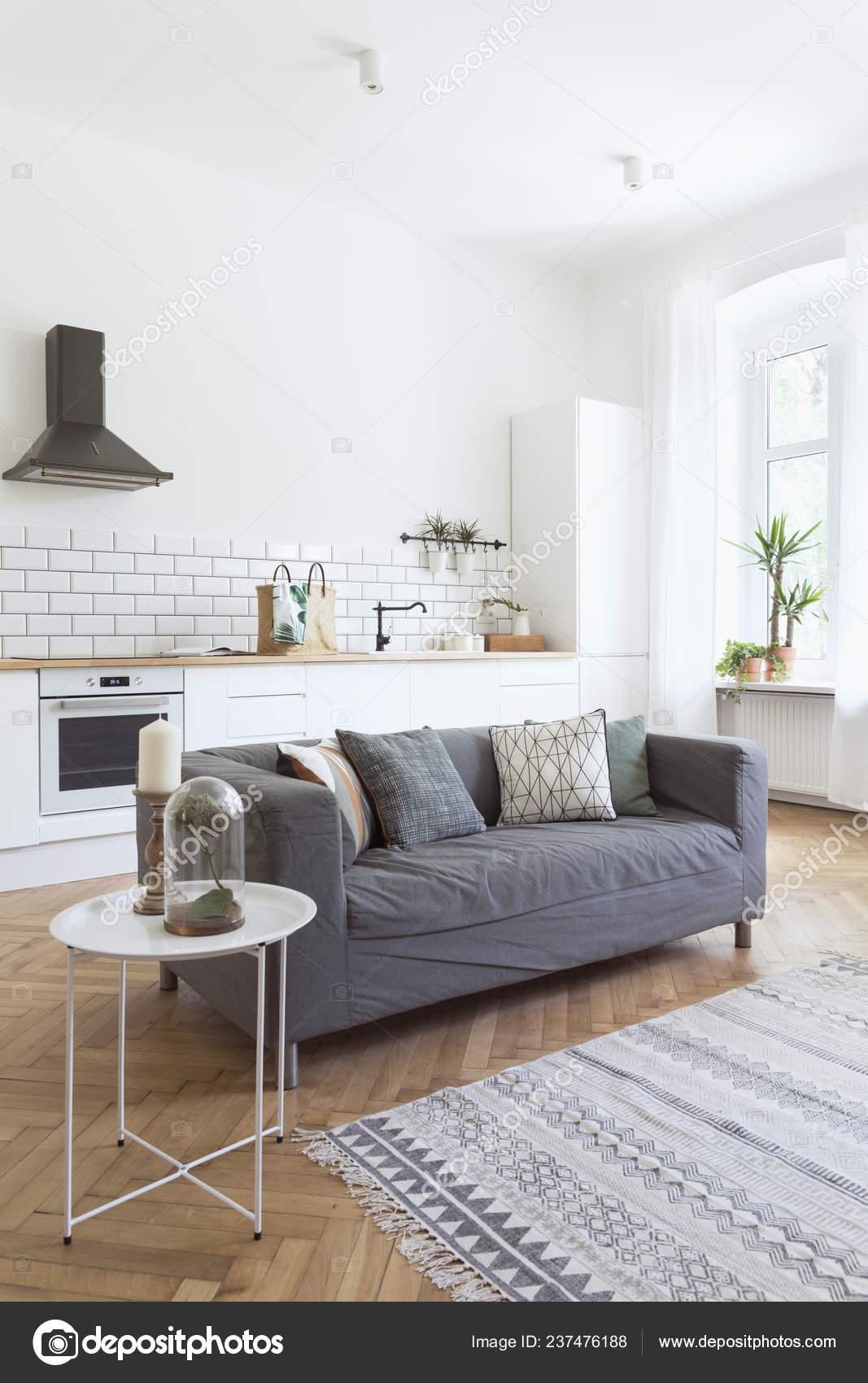 Modern Open Interior Living Room Kitchen Stylish Sofa Plant White Stock Photo C Followtheflow 237476188