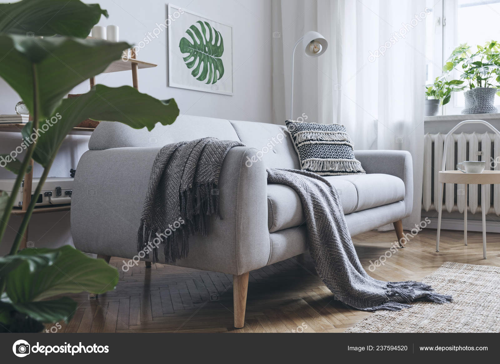 Cozy Living Room Interior Grey Sofa Scandinavian Style
