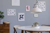 Stylový skandinávský interiér obývacího pokoje v obývacím bytě s módním titulním rámečkem, vzdušná zařízení, dřevěné komody a elegantní příslušenství. Šedivé stěny pozadí. Moderní domácí výzdoba. Šablony