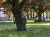 Prága, Csehország - 2018. május 7.: Két év egy fiú áll, közel a fa a kertben. A szőke fiú áll a füvön, közel a fa a kertben.