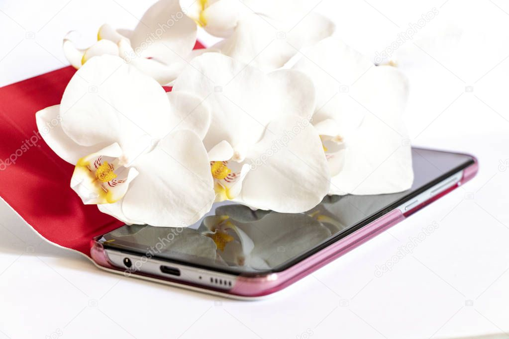 white orchid lies on the touchscreen phone on white background