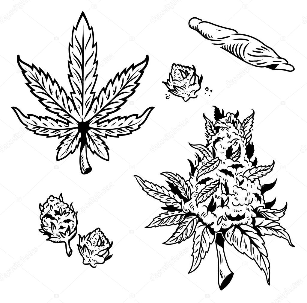 cannabis marijuana set