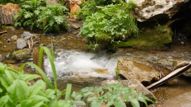 Close shot of small quaiet forest waterfall