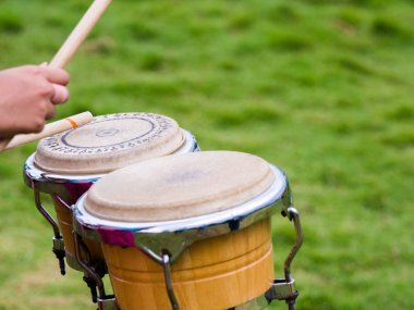 Close up drummer hands playing percussion Bongo drums with drumsticks in green nature background.