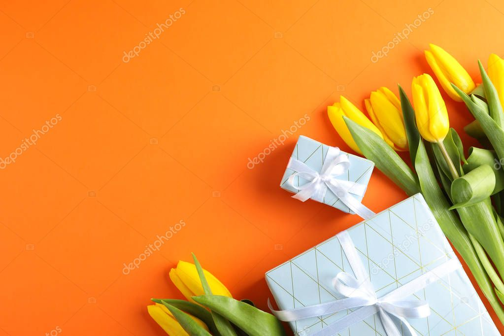 Beautiful fresh yellow tulips with gifts on color background