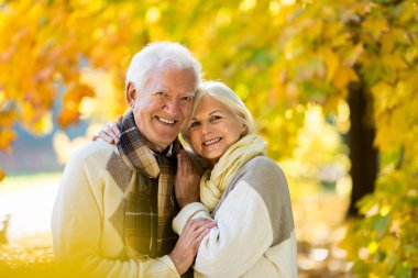 Senior couple in autumn park stock vector