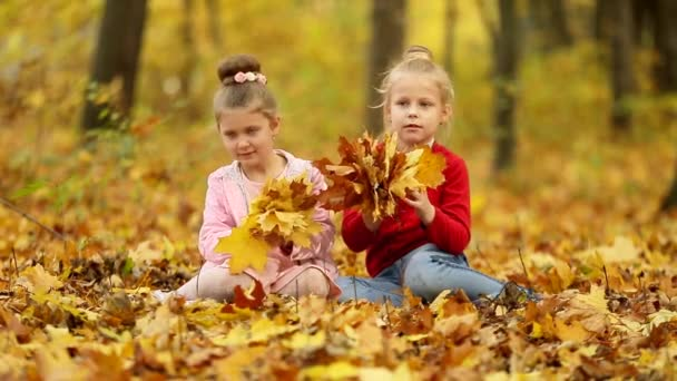 two little girls are gathering a bouquet of autumn leaves