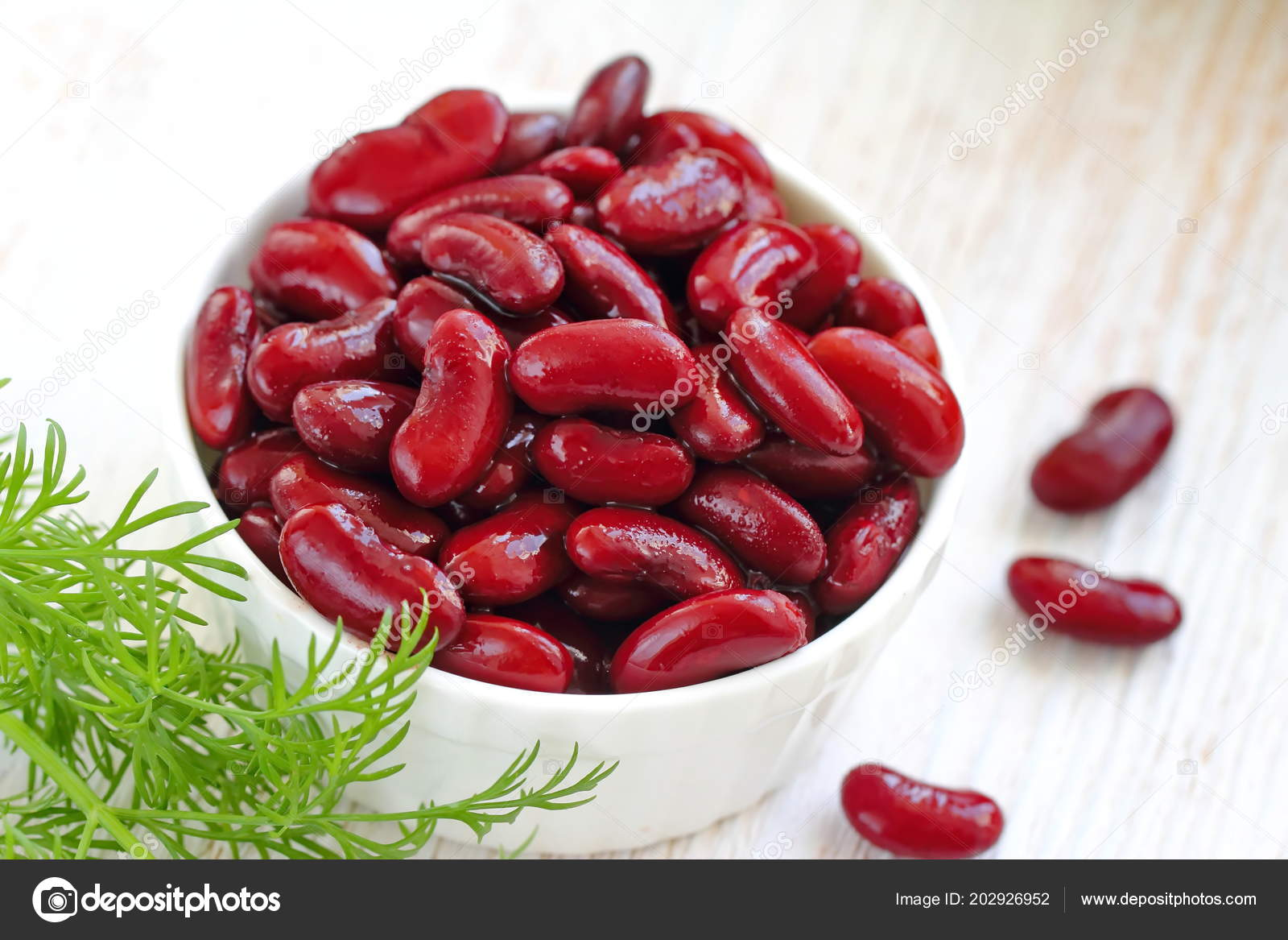 Boiled Red Kidney Beans White Bowl Stock Photo C Lisaamc 202926952
