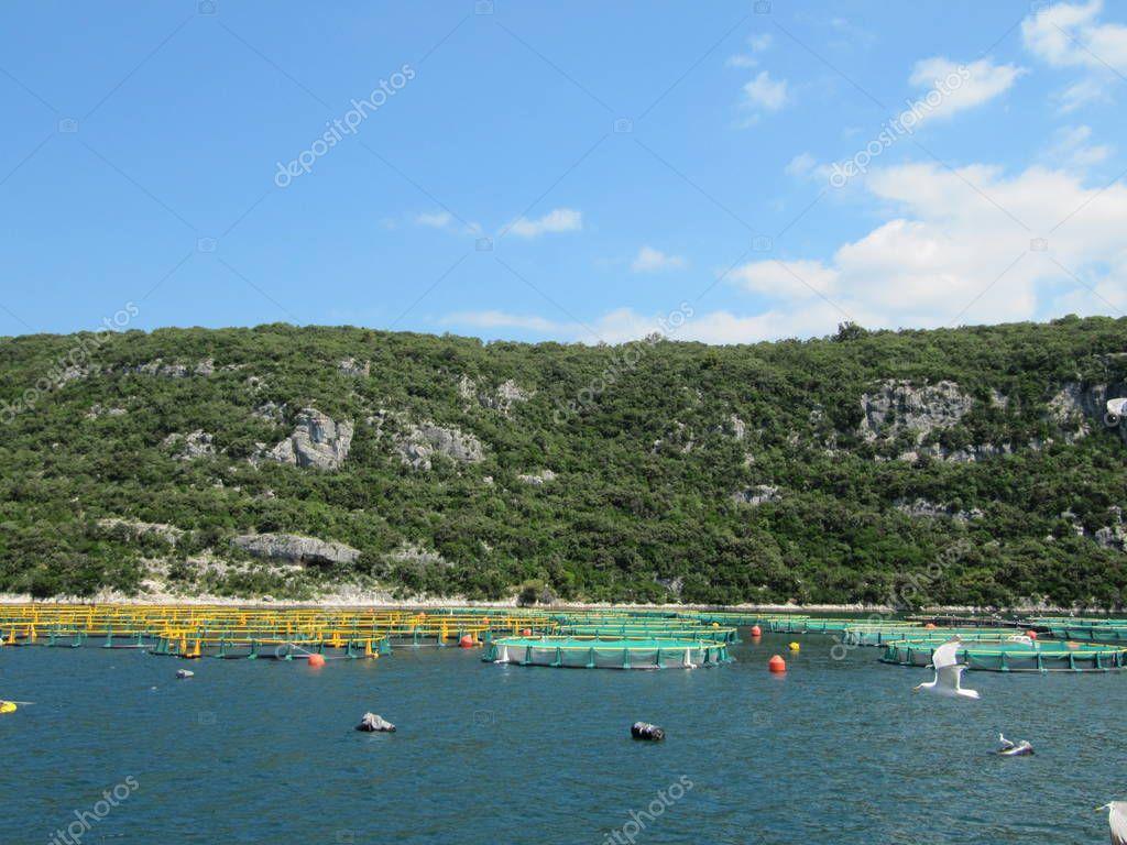 Oyster farms. Europe Croatia.