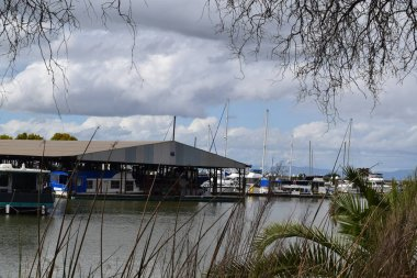 Marina tucked away behind bullies and a willow tree.