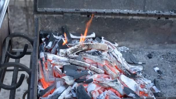 Húst főzni szénen. Grill tűzifával