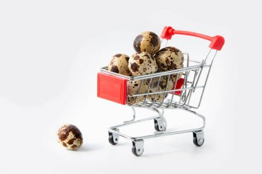 Quail eggs in the buyer's basket. Gray isolated background. Healthy foods.