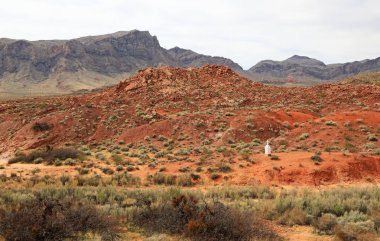 Landscape with John J Clark Memorial - Valley of Fire State Park, Nevada