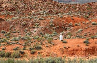 Sergeant John J Clark Memorial - Valley of Fire State Park, Nevada