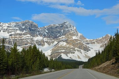 Landscape with Icefield Parkway - Jasper NP, Alberta, Canada