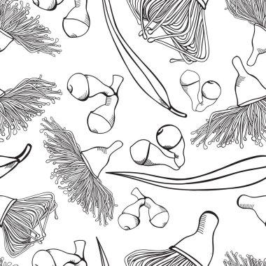 Flowering Gumnut Eucalyptus Seamless Patterns Vector Illustrations