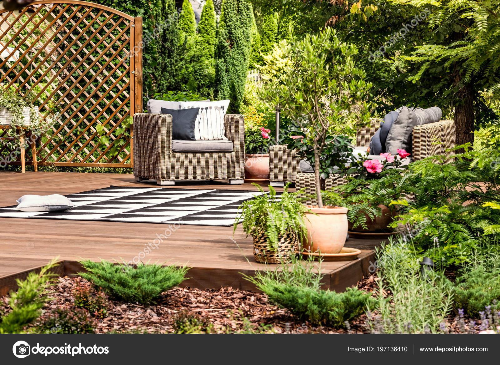 Muebles Mimbre Jardín Una Terraza Decoración Con Plantas Arbustos ...