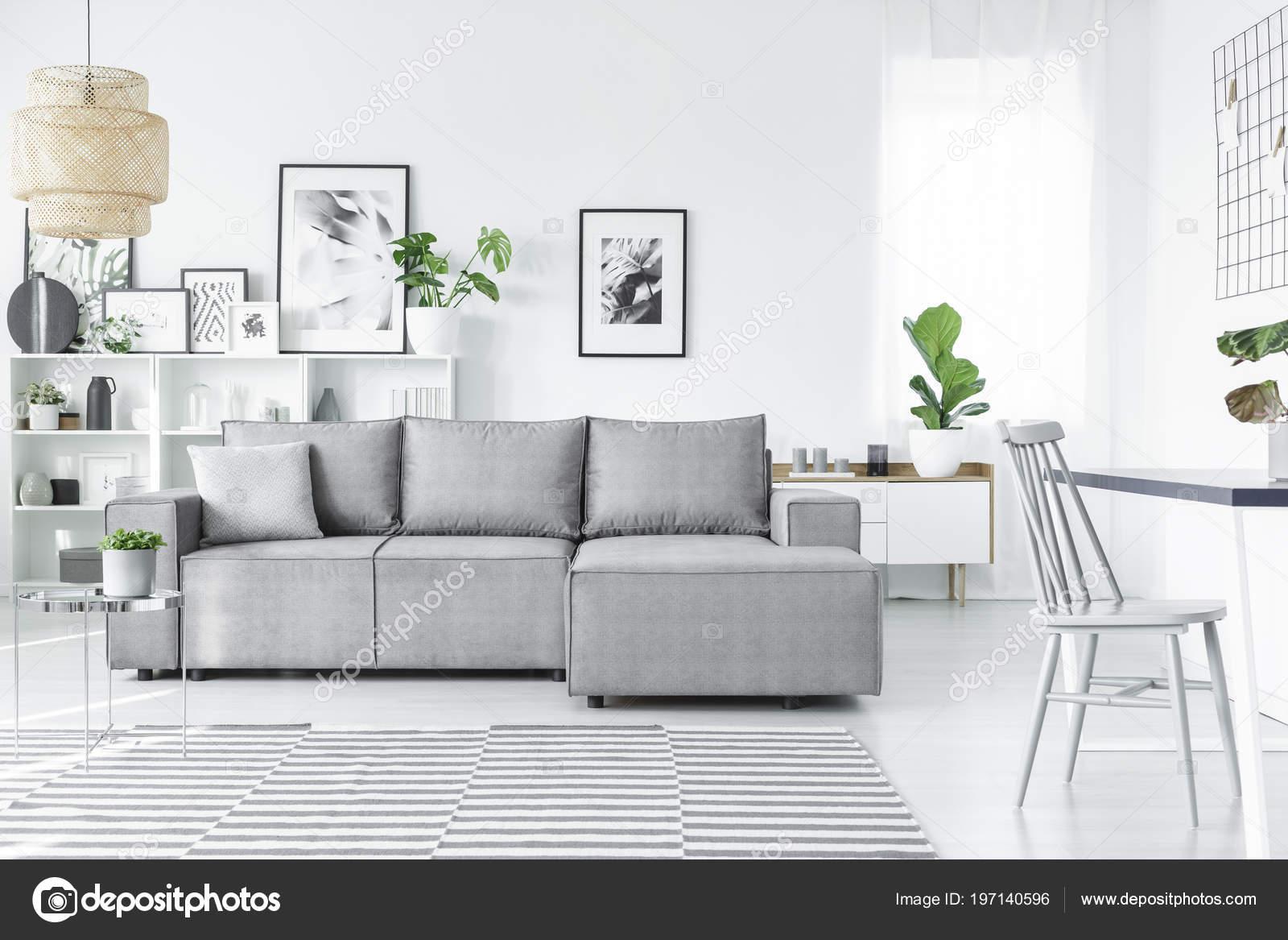 Skandynawski Salon Wnętrza Wygodne Sofy Obrazy Rośliny Paski Dywan