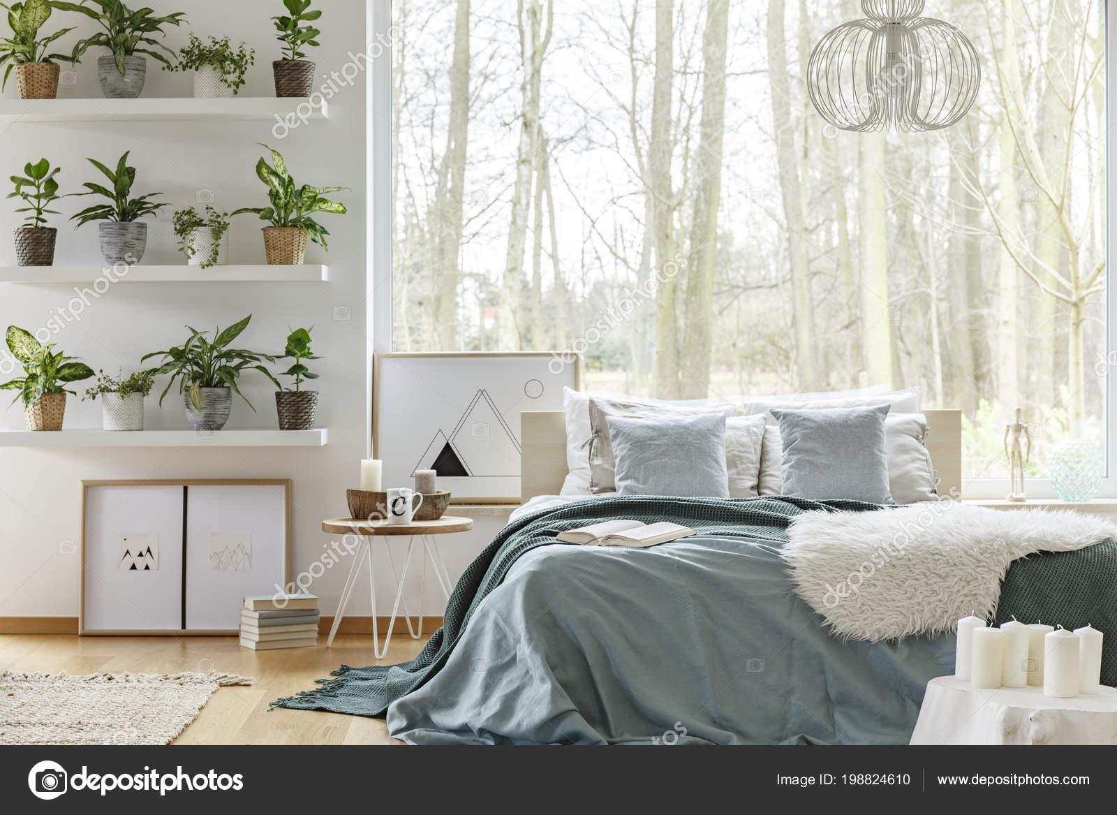 welche pflanzen im schlafzimmer schlafzimmer lampe mit nachttischlampe g nstige gebrauchte. Black Bedroom Furniture Sets. Home Design Ideas