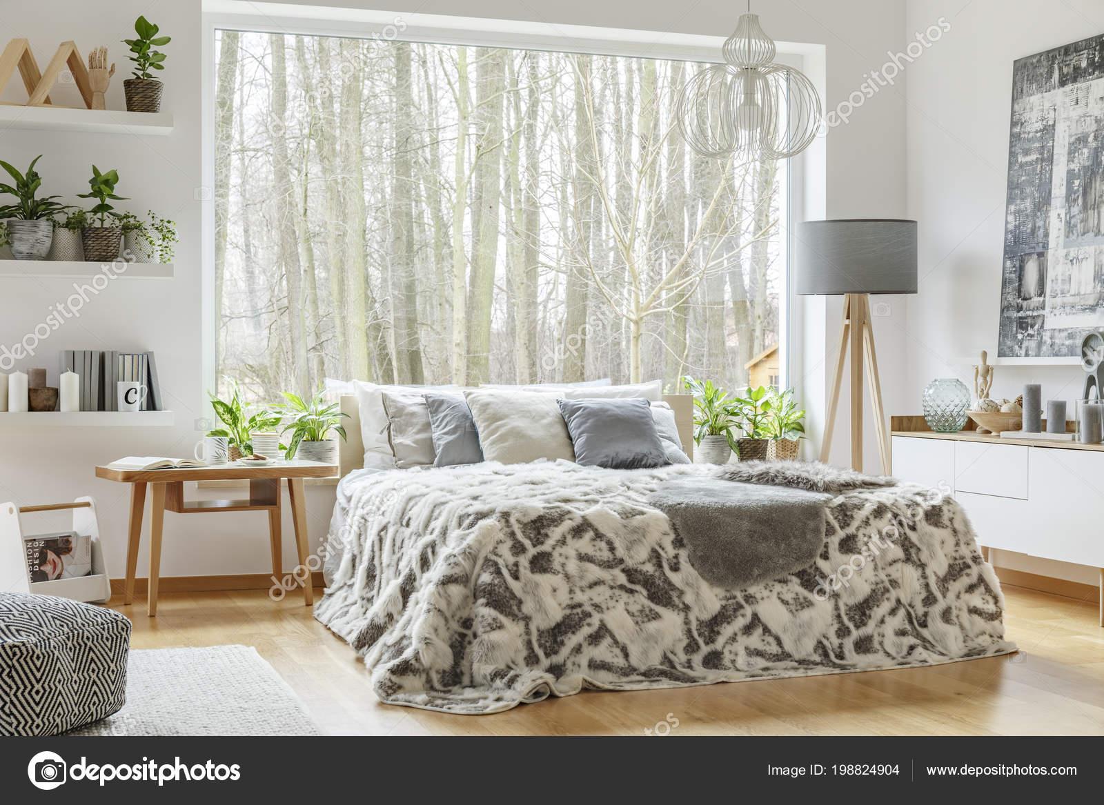 ruime gezellige slaapkamer interieur met een kingsize bed met grijze stockfoto