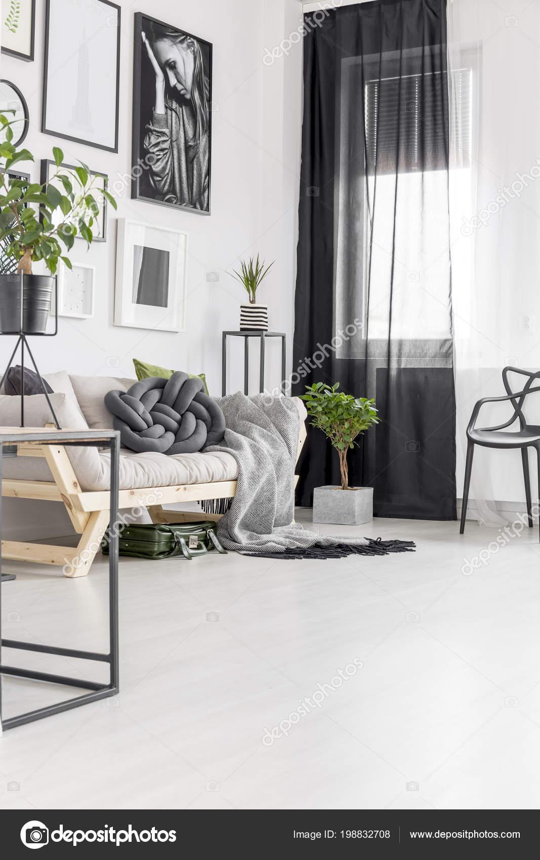 Pflanzen Sie Neben Sofa Wohnzimmer Interieur Mit Plakaten Der Wand