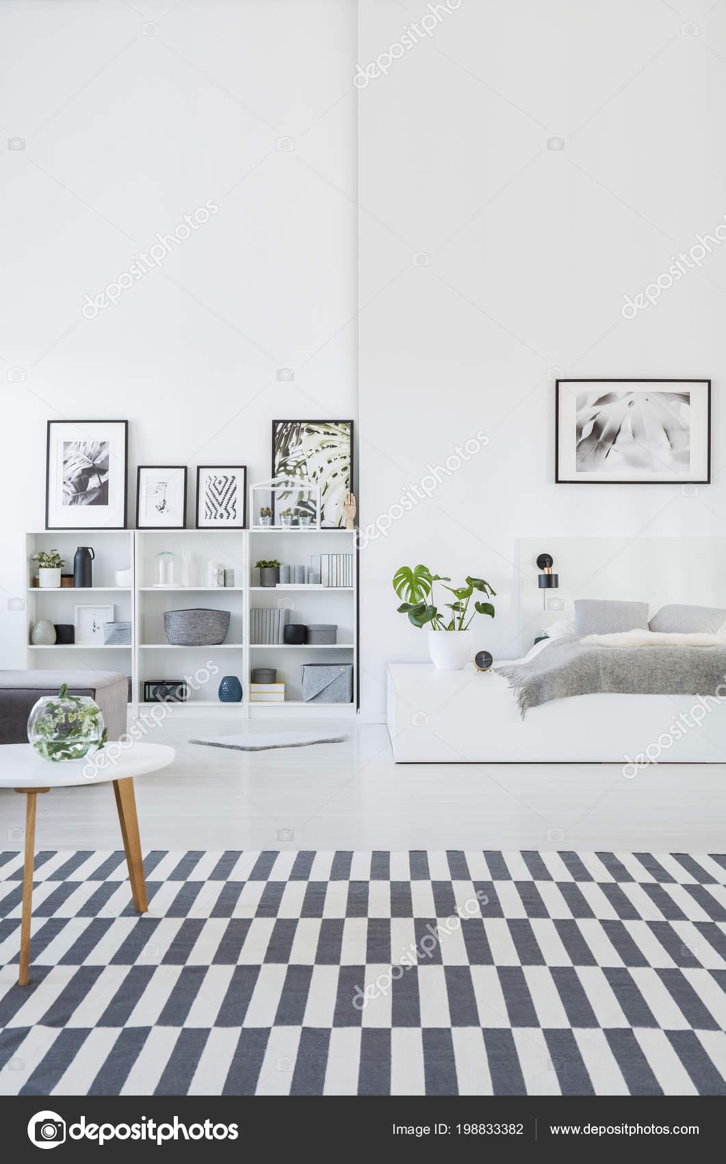 Intérieur Chambre Coucher Spacieuse Gris Blanc Avec Tapis Rayé Les ...
