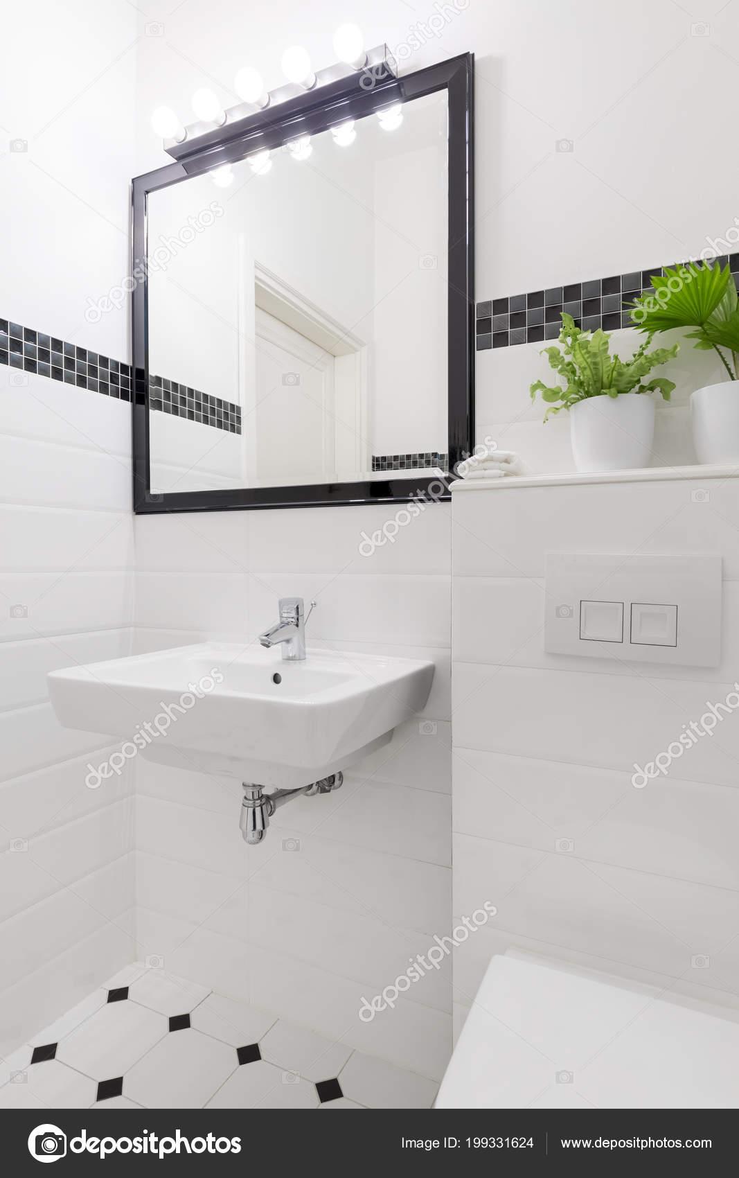 Miroir Dessus Lavabo Intérieur Salle Bain Blanc Noir Avec Plante ...
