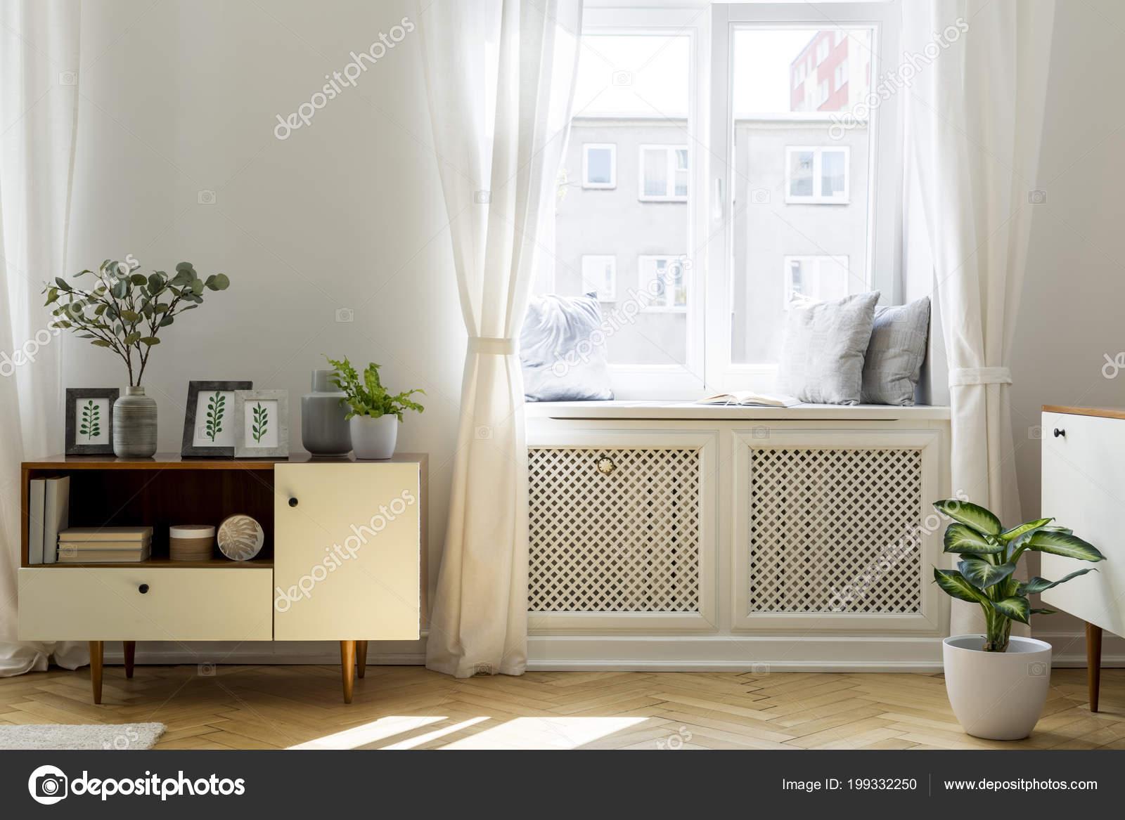 Plant houten kast witte woonkamer interieur met venster echte foto