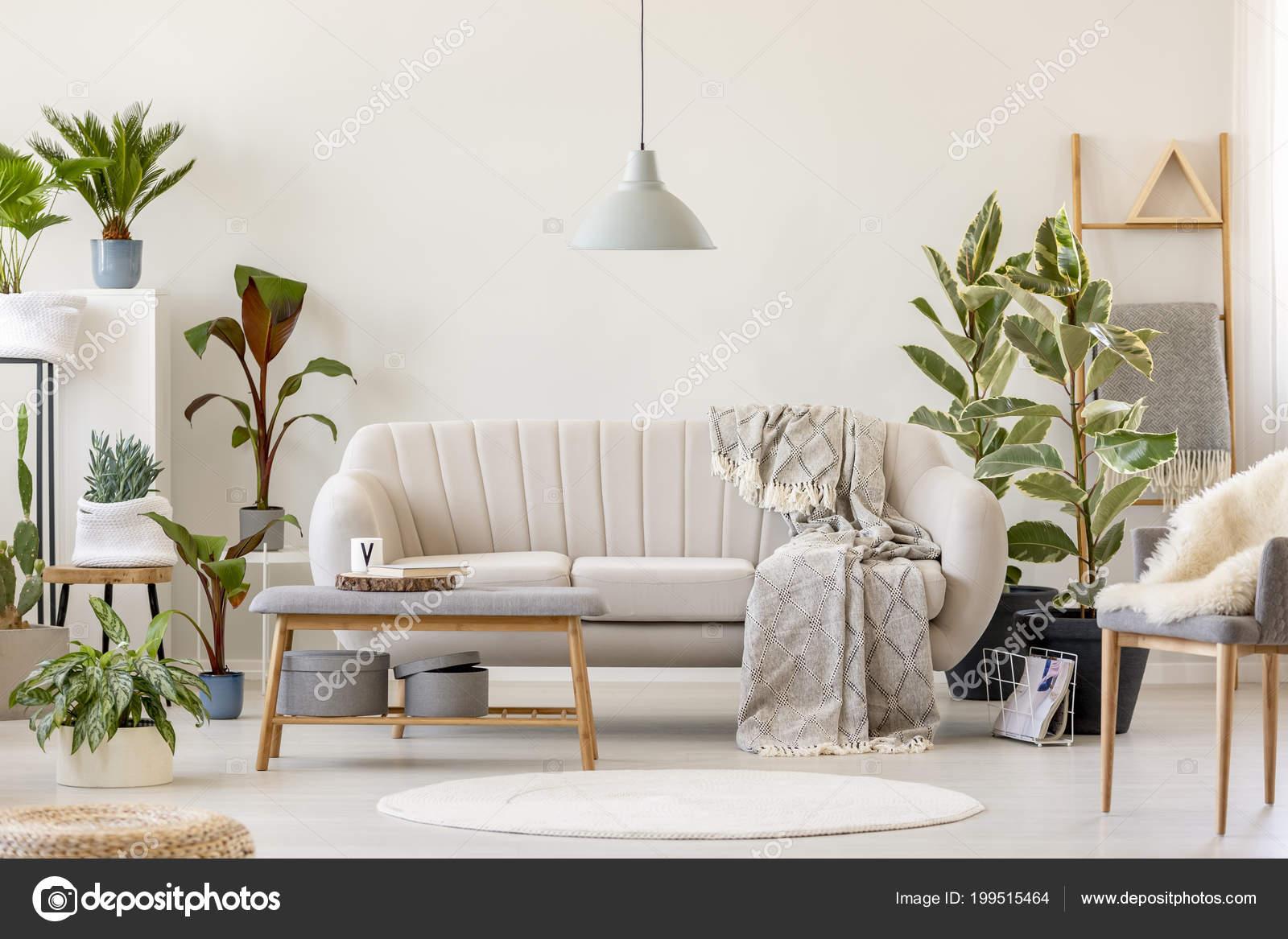 deken beige bankstel onder grijs lamp floral woonkamer interieur met stockfoto