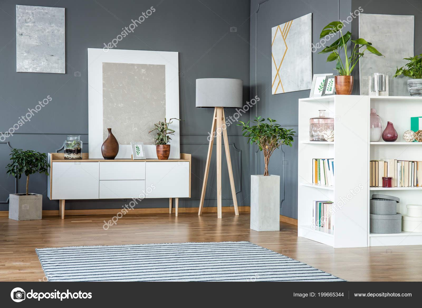 Witte Kast Planken Houten Lamp Schilderijen Grijze Wand