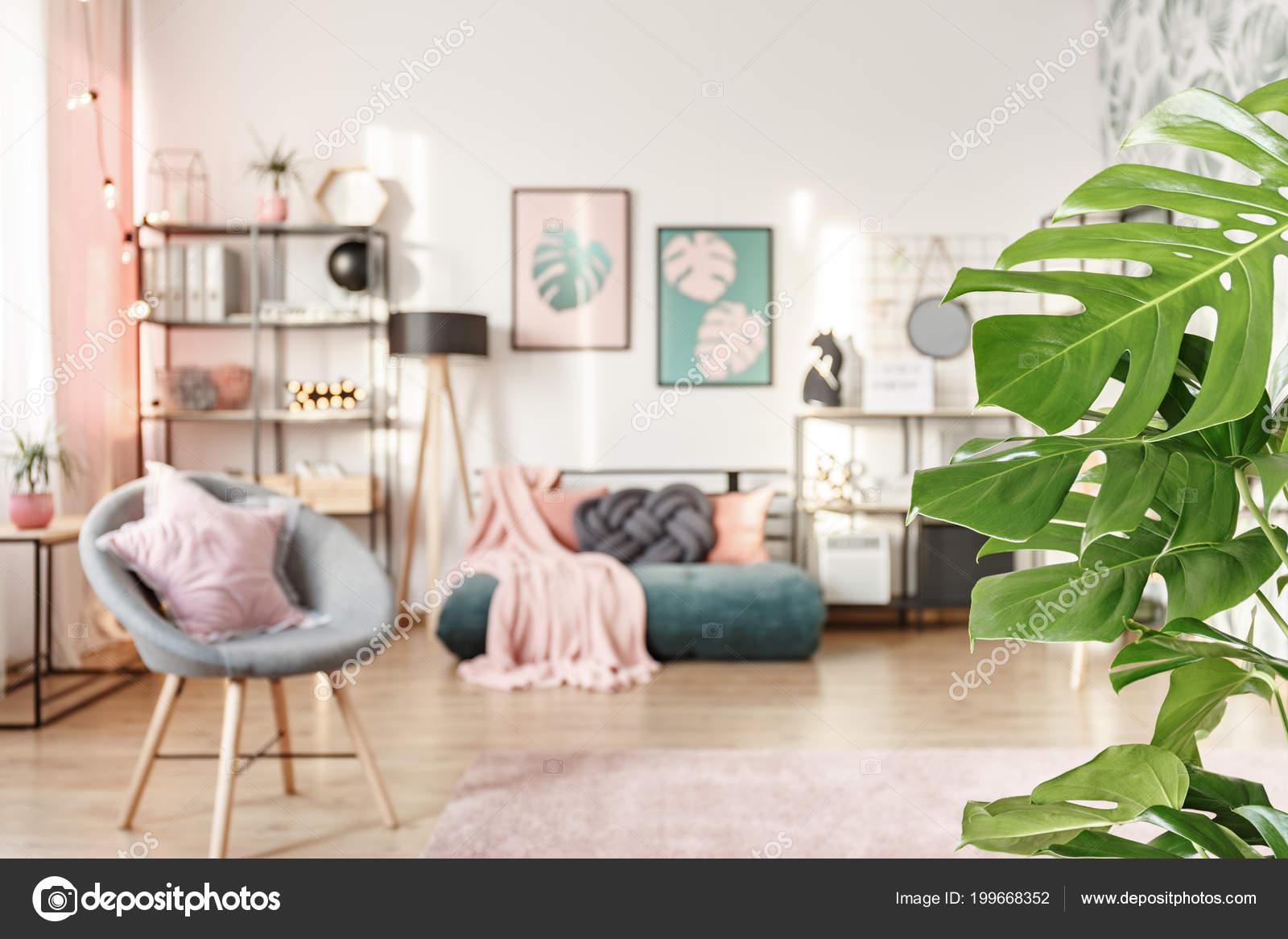 Slaapkamer Groen Grijs : Close van groene bladeren girl slaapkamer interieur met grijze